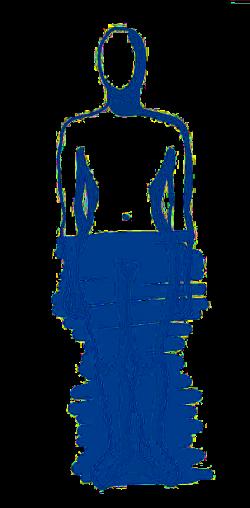 Biorythmus_Koerper_Bereich